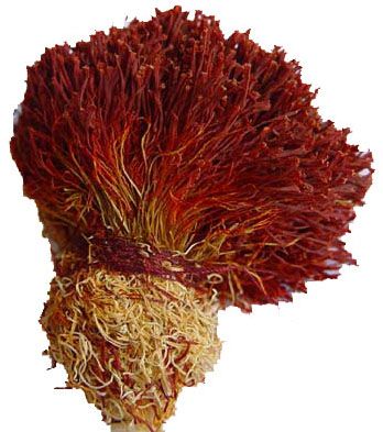 saffron bunch, Saffron, Iran Saffron, Saffron Exporter